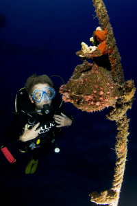 Diver and frogfish on the Salem Express. by Dray Van Beeck 